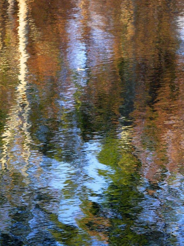 Andrew Follows. 'Autumn colours' 2009