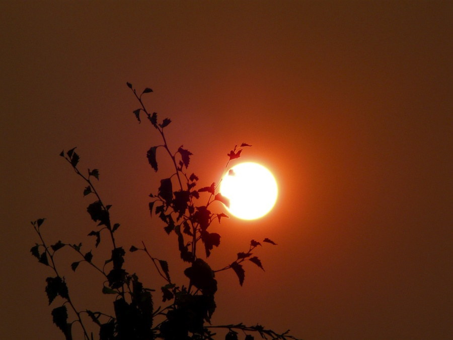 Andrew Follows. 'Bushfire sun' 2009